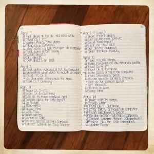 Old Bullet Journal